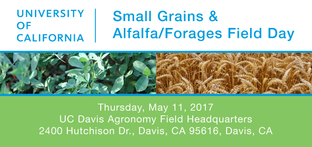 Small Grains - Alfalfa/Forages Field Day